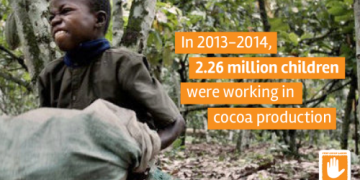 Child working on a cocoa farm - norvanreports SOEs, JVCs and OSEs post Ghs 226 billion liabilities for 2019 - Finance Ministry SOEs, JVCs and OSEs post Ghs 226 billion liabilities for 2019 – Finance Ministry Child working on a cocoa farm norvanreports 360x180