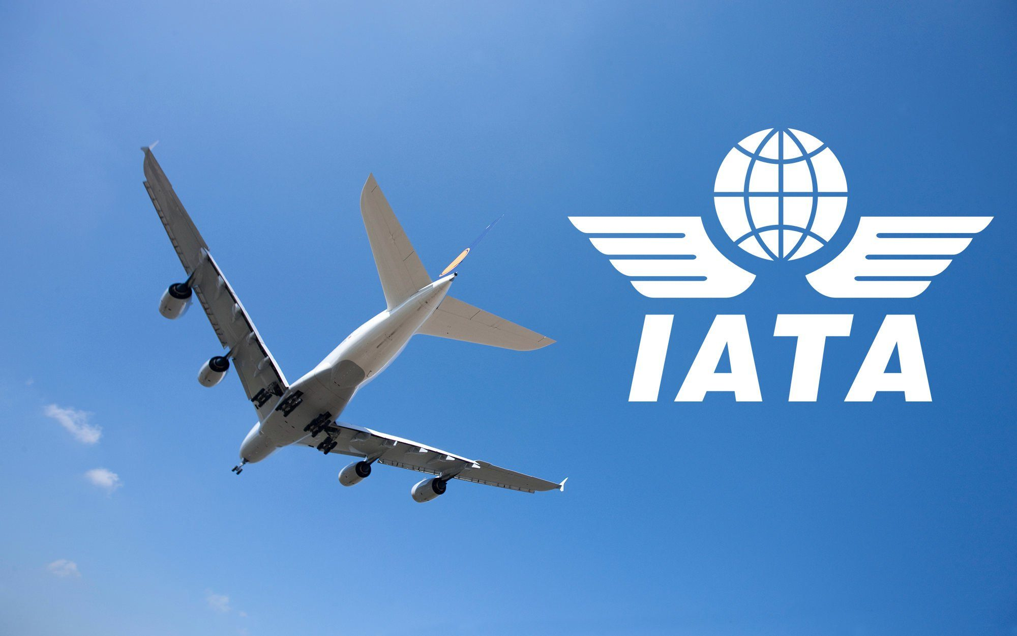 Confidence in air travel returns despite restriction issues - IATA