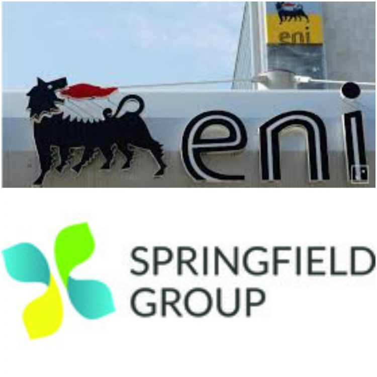 Home ENI and Springfield 750x750  Home ENI and Springfield 750x750